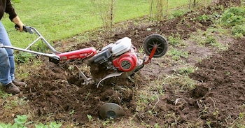 How to Seed a Lawn Using a Tiller