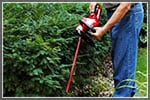 Electric Hedge Trimmer Buyer's Guide