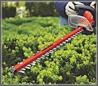 Hedge Trimmer Buyer's Guide