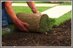 How To Use Sod For A Beautiful Yard