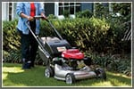 How to Pick the Perfect Push Lawn Mower