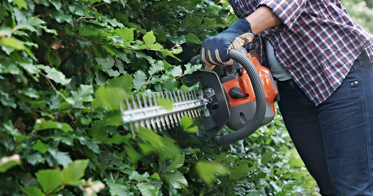 Best Gas Powered Hedge Trimmers Best Selling Amp Top Rated